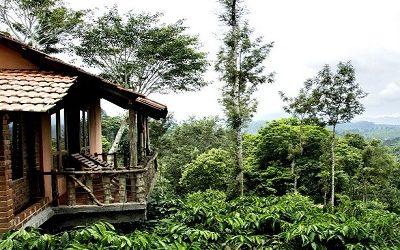 Wayanad Tree House Package
