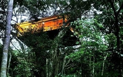 Ooty Coorg Wayanad and Mysore Package