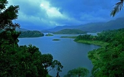 Wayanad Tour Packages from Calicut (Kozhikode)