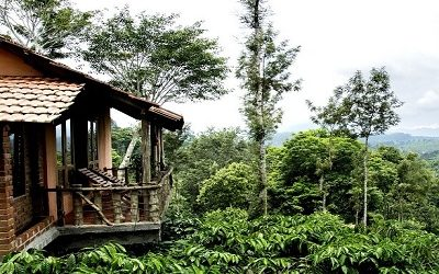 Wayanad Tree House Package